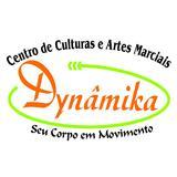 Academia Dynamika - logo
