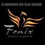 Academia Fenix - logo