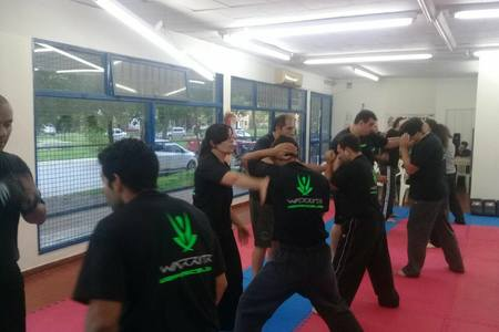 LEADERSHIP MARTIAL ARTS 1