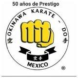 Okinawa Veracruz 1 - logo