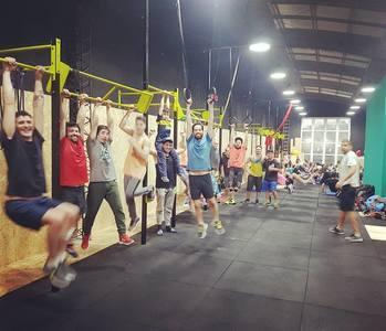 Box Arena Training