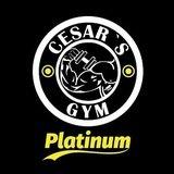 Cesar's Gym / Ecatepec - logo