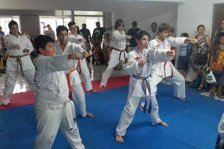 Tiger Martial Arts Tigre -
