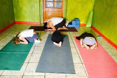 Live in Yoga -