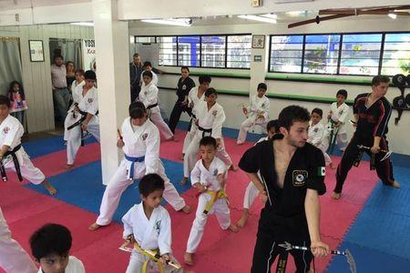Yoshitaka International Karate Do -