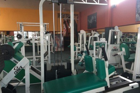 Gold Gym -