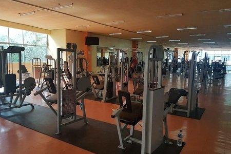 Danny Boy Gym