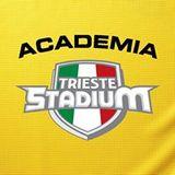 Academia Trieste Stadium - logo