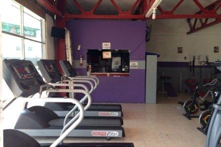Body Training Gym -