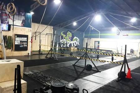 Raptor BOX Temuco