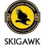 Centro De Treinamento Skigawk - logo