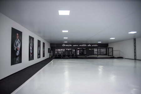 Gracie Jiu Jitsu Academia -