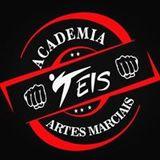 Academia Teis De Artes Marcias - logo