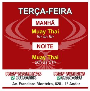 Phoenix Artes Marciais - Ryan Gracie Ribeirão Pires