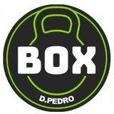 Box Dom Pedro Il - logo