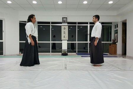 México Aikido Kenjoshinkan -