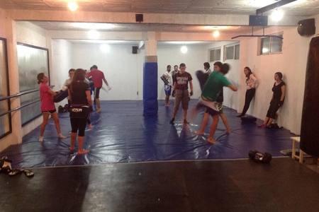 Steel Core Fight Center (Renzo Gracie Toluca) -