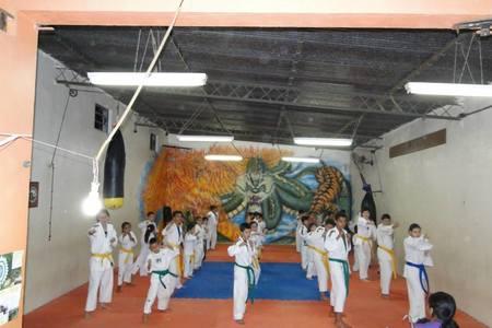 Hapkido Contato Brasil -