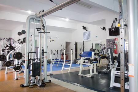 Academia Trainer -