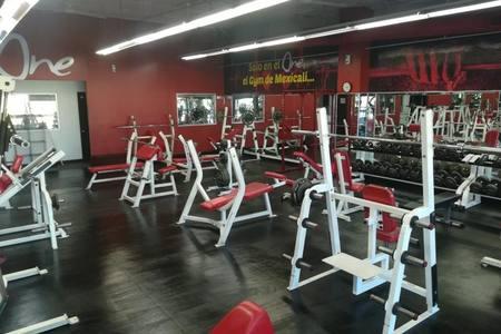 One Premium Gym -