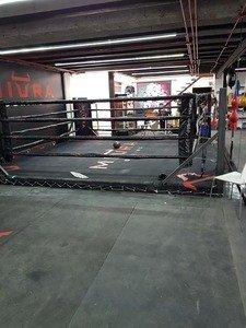 Miura Boxing -