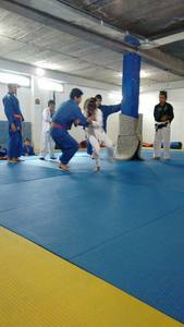Bujutsu Xalapa Devil Dog´s Team -