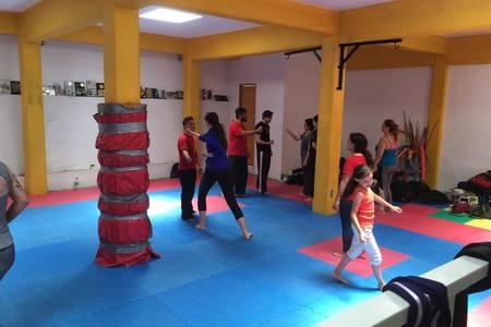 Zen Martial Arts Desierto de los Leones