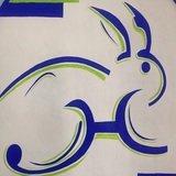 El Conejo Gym - logo