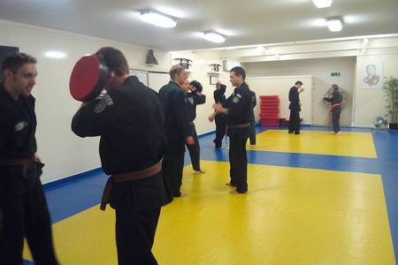 Action Kenpo Karate Studio -