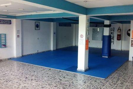 Jeongsin Taekwondo Atizapan -