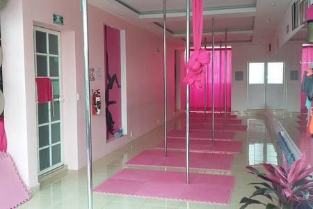 Pink Studio -