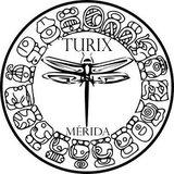 Turix Ultimate Frisbee - logo