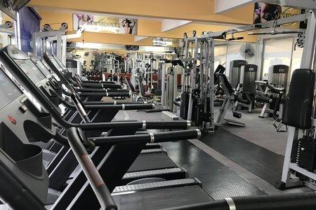 Opus Gym Olivos -