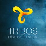 Tribos Fight E Fitness - logo