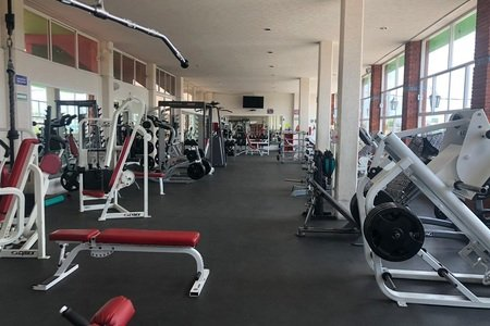 Gym Manía -