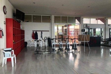 Gym Manía