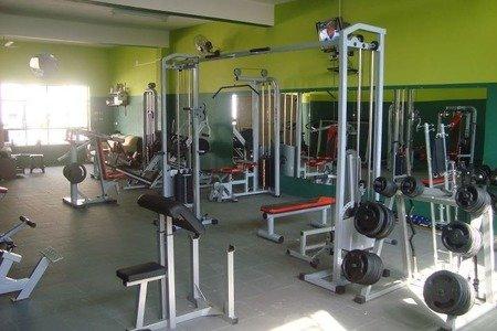 Summer Gym Academia
