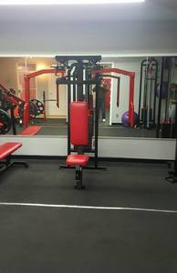 The Muscle House Gym