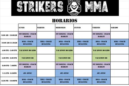 Strikers Legacy