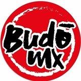 Budo Mx Crossfit - logo