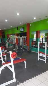 Animal Gym