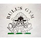 Bull's Gym - logo