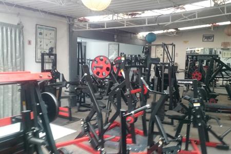 Bull's Gym