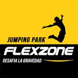 Flexzone Jumping Park Explanada Puebla - logo
