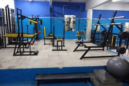Lion Gym -