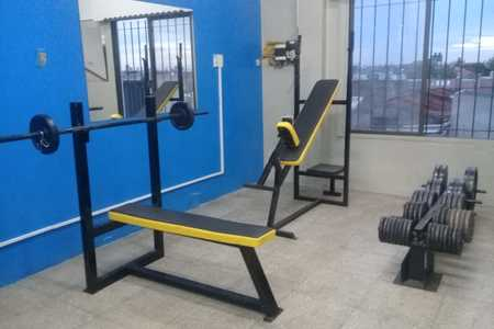 Lion Gym