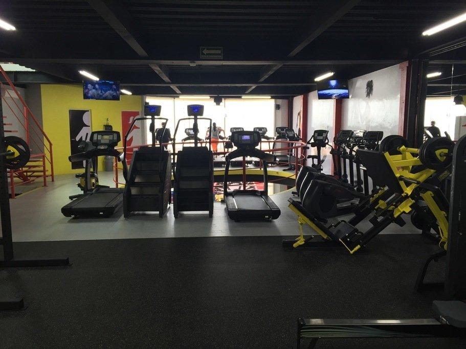 Gimnasio euphoria fitness puerto méxico coatzacoalcos
