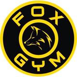 Fox Gym Oficial - logo