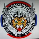 Academia Silvério Fighter - logo