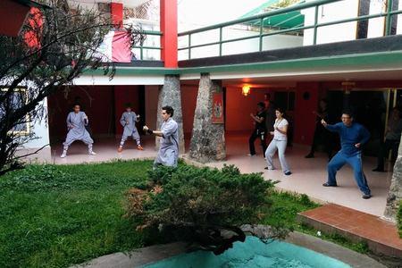 Dharma kung fu -